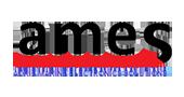 adrie-amrine-logo